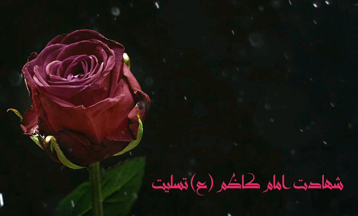 شهید خوشتیپ و جوان دهه هفتادی، که به تازگی فدایی حضرت زینب (س) شد