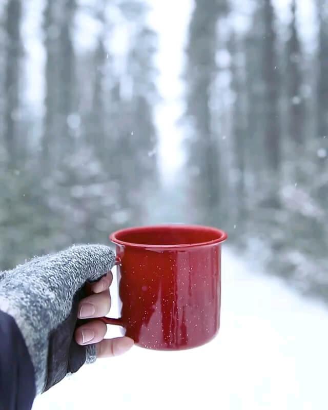 صبح برفی بخیر