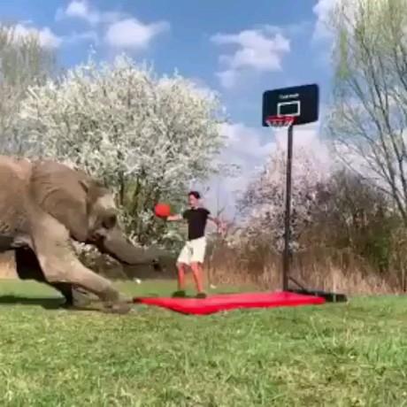 از خوبان بسکتبال (((: | دانلود gif طنز