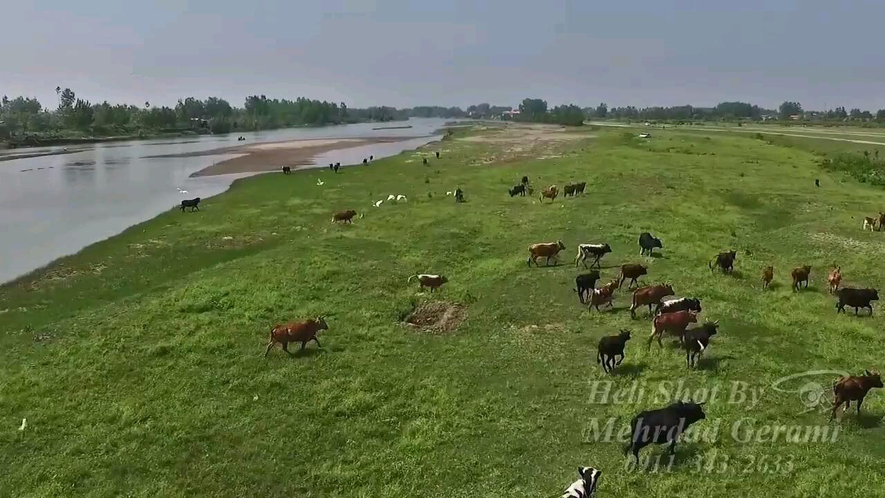 پارک ملی بوجاق گیلان