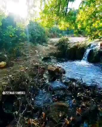 کلیپ طبیعت سنگ رود رودبار گیلان