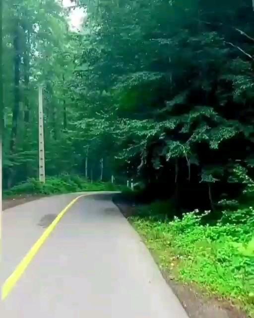فیلم جاده درازنوی شهرستان کردکوی مازندران