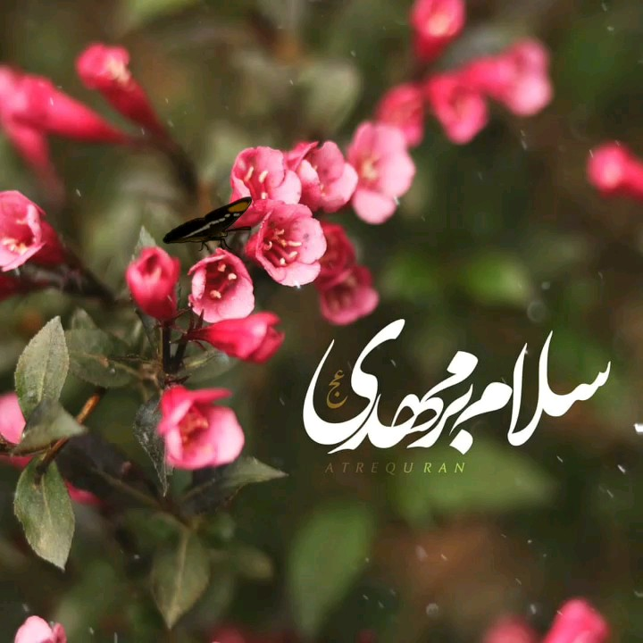 نیمه شعبان مبارک - السلام علیک یا صاحب الزمان