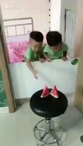 دوقلوهای باهوش و زرنگ!!