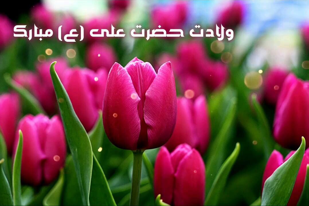 ولادت امام علی (ع) مبارک باد
