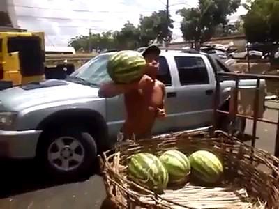 سلطان گرفتن هندوانه | دانلود گیف های باحال