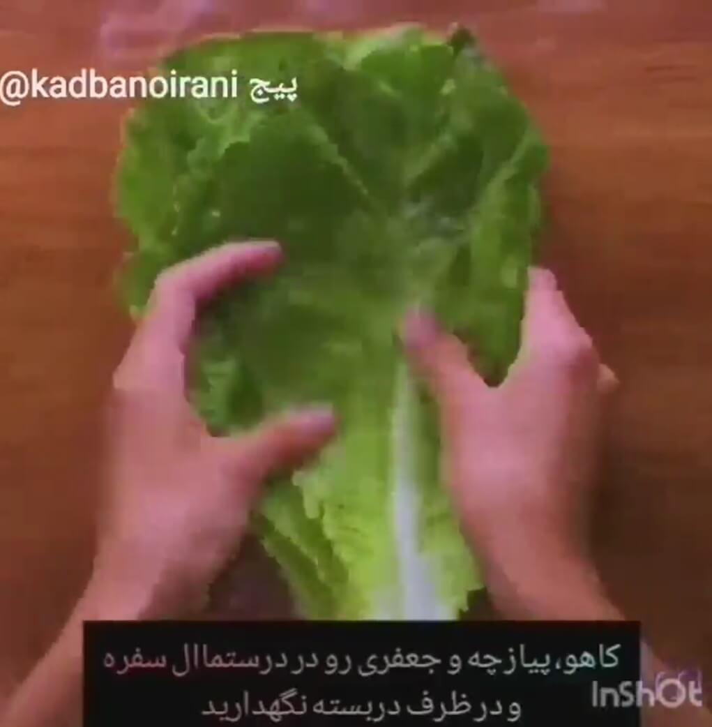 کلیپ ترفند نگهداری طولانی مدت مواد غذایی