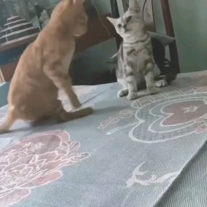 بیا بغل خودم