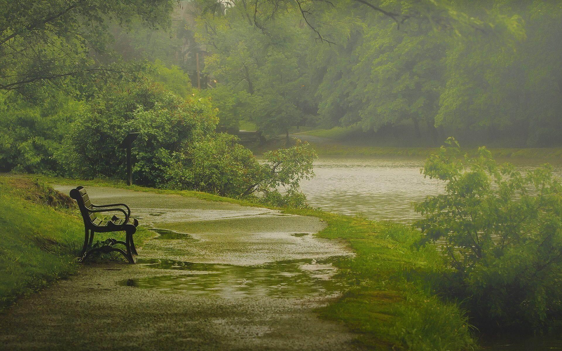 عکس متحرک باران