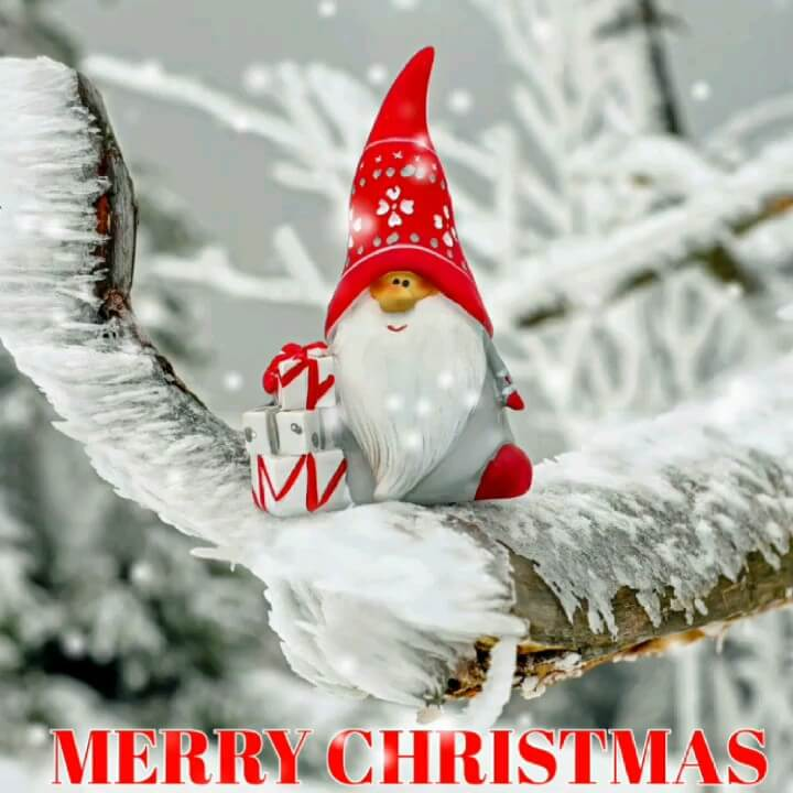 عکس متحرک کریسمس مبارک