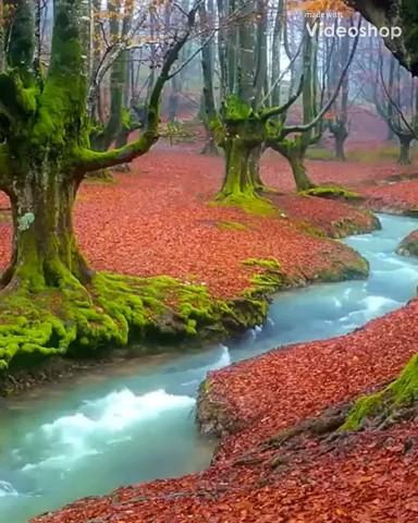 پارک طبیعی و زیبای Gorbea در اسپانیا | ویدیو گردشگری