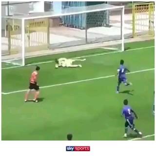 کلیپ خنده دار فوتبالی جدید:))