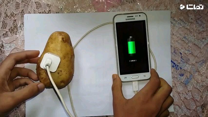 شارژ موبایل با سیب زمینی