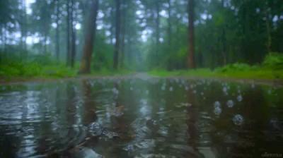 باران زیبا