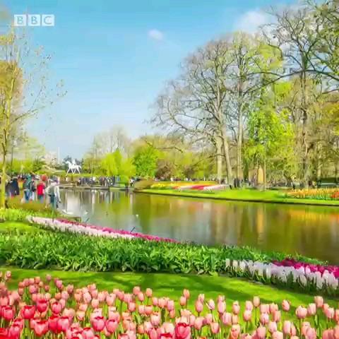 با دلرباترین مناظر طبیعی جهان در بهار آشنا شوید