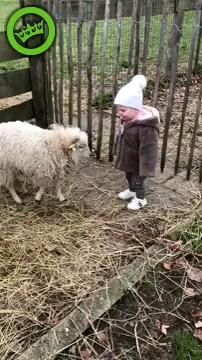 وقتی بچه رو دست باباش میسپری !