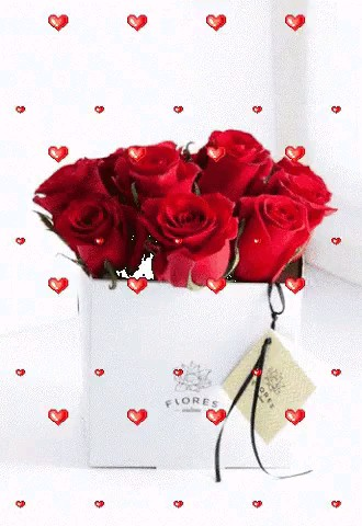 تقدیم عاشقانه - گل زیبا