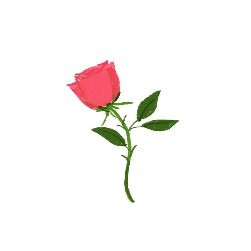 استیکر متحرک گل رز