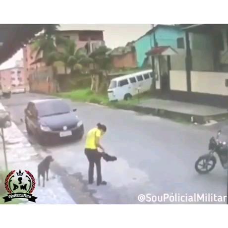 بدشانس ترین دزد دنیا  :)) | ویدیو خنده دار