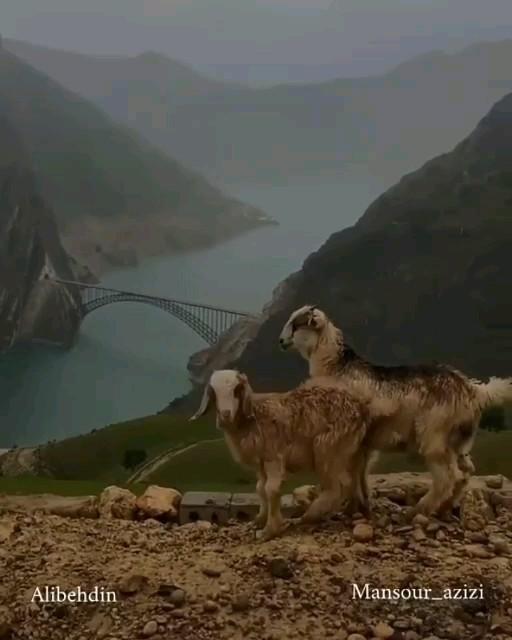 بزرگترین پل زیر قوسی ایران | سد کارون ۴ بزرگترین سد بتنی دو قوسی ایران