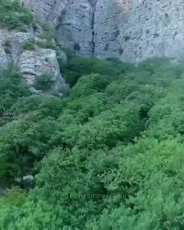 طبیعت زیبای پارک ملی گلستان | ایرانگردی