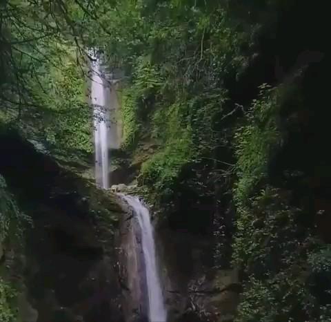 آبشار دارنو جنگل های نوشهر مازندران | کلیپ گردشگری کوتاه