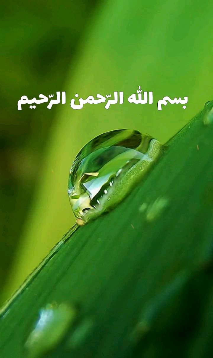عکس بسم الله الرحمن الرحیم متحرک زیبا