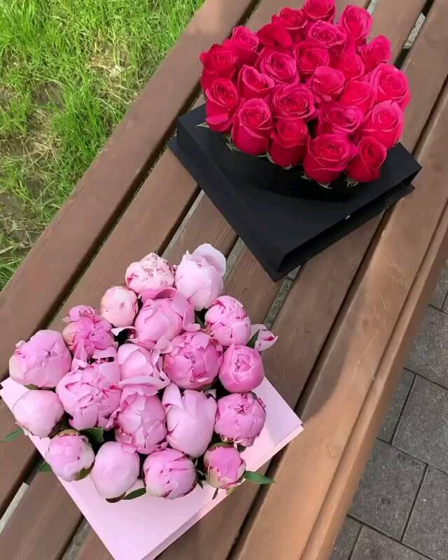 گیف گل های رز عاشقانه | تقدیم عاشقانه