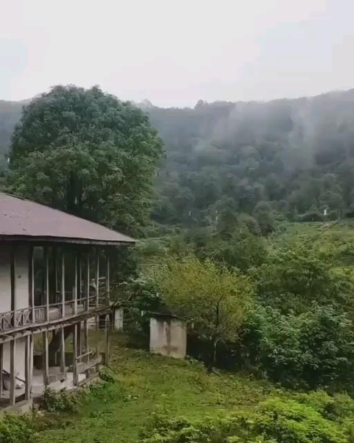 گیف طبیعت بارانی ایران