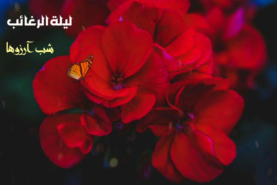 کارت پستال دیجیتال لیله الرغائب شب آرزوها