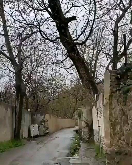 کوچه باغ های کن تهران