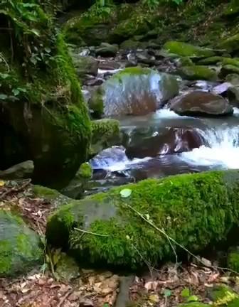 طبیعت گردی جمشید آباد سواد کوه در مازندران