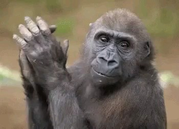 دست زدن - تشویق کردن