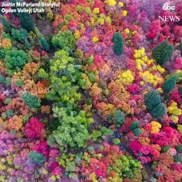 پاییز زیبای یوتای آمریکا
