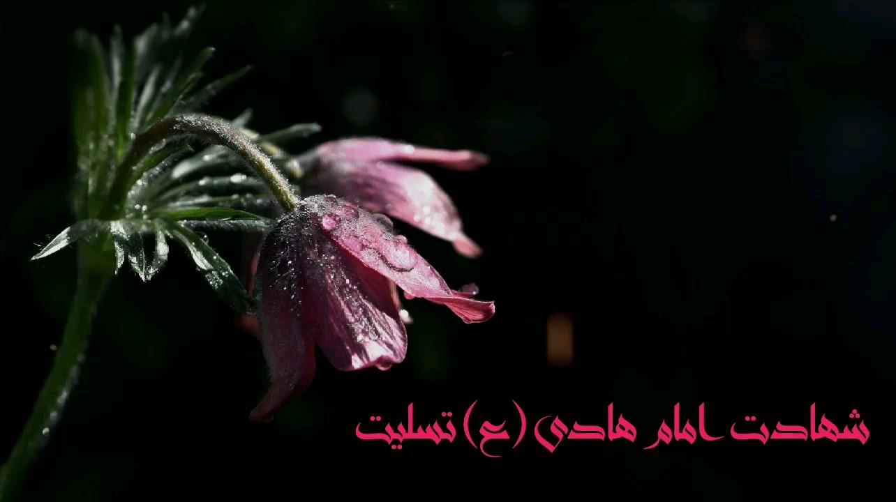 تصویر متحرک شهادت امام علی النقی الهادی (ع) تسلیت باد