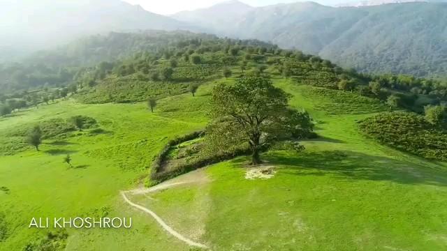 فیلم طبیعت شگفت انگیز ماسال
