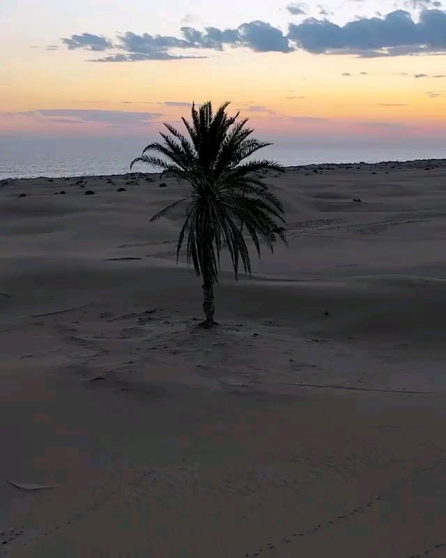 ساحل زیبای کویری درک چابهار