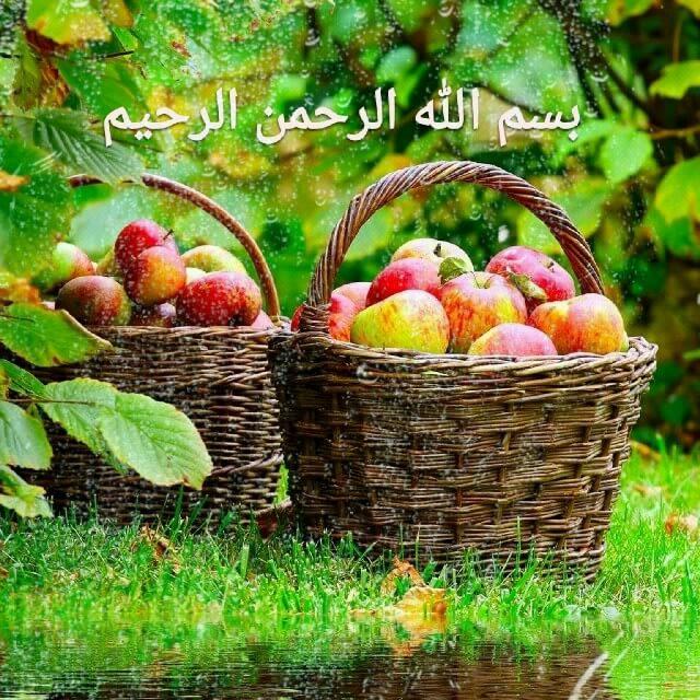 تصویر متحرک بسم الله الرحمن الرحیم