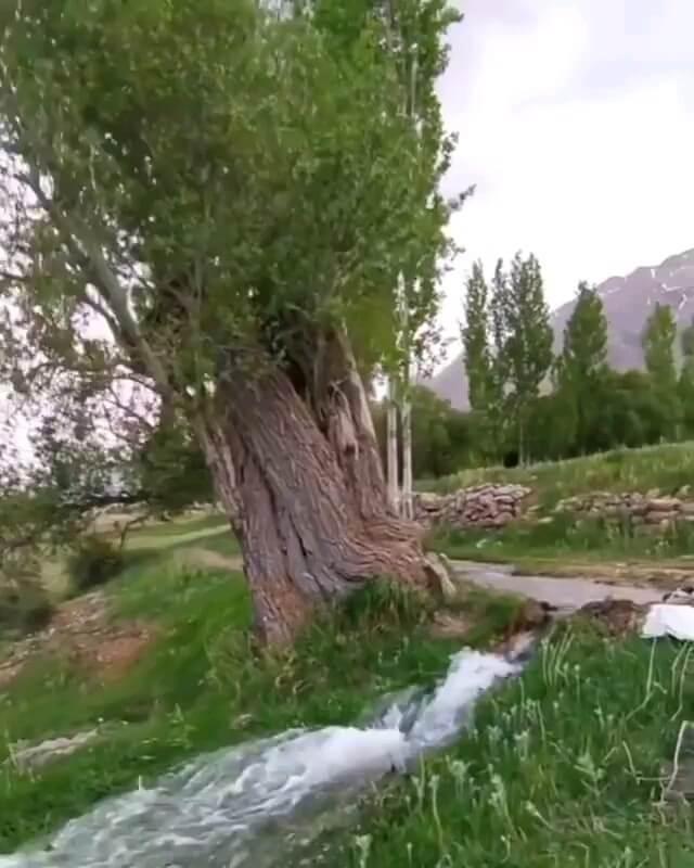 فیلم تابستان طبیعت خوانسار اصفهان