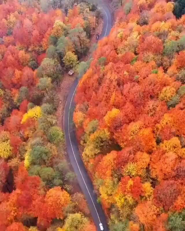 فیلم پاییز بینظیر در جاده اسالم به خلخال