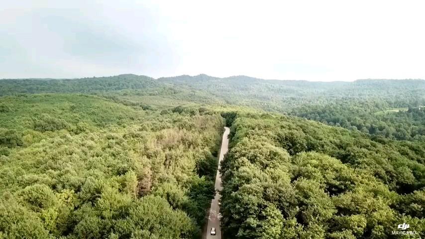 فیلم هوایی فوق العاده زیبا  و شگفت انگیز از سرسبزی و وسعت جنگل دارابکلا