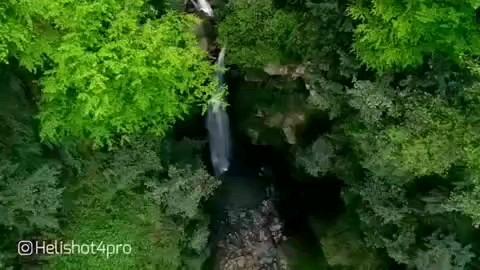 فیلم آبشار گزو