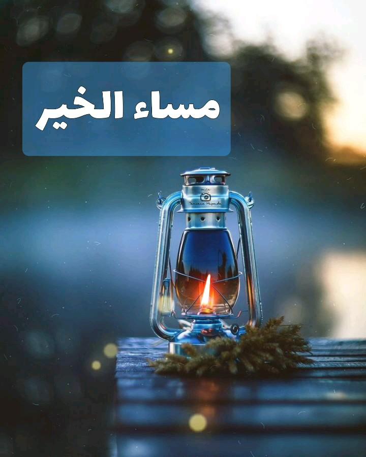گیف شب بخیر عربی | مساء الخیر