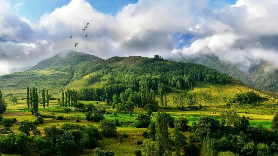 گیف طبیعت زیبا | عکس متحرک طبیعت