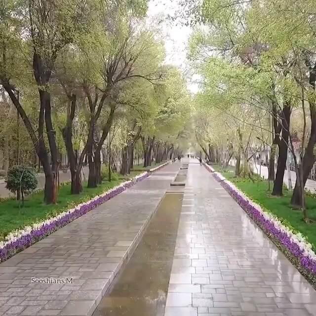 فیلم چهار فصل زیبای خیابان تاریخی چهارباغ اصفهان