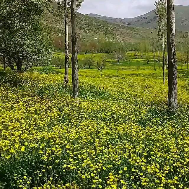 طبیعت زیبای سهند روستای یای شهری مراغه آذربایجان شرقی