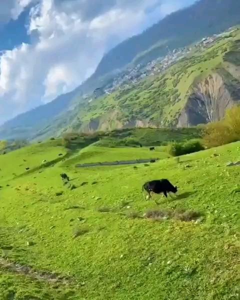 طبیعت زیبای مازندران، رویان، جاده آب پری