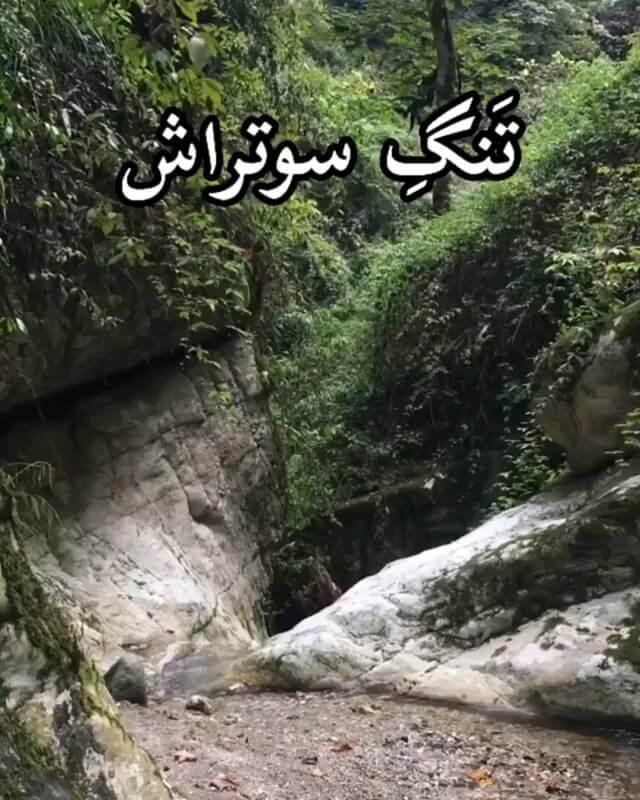 تنگ سوتراش عباس آباد مازندران