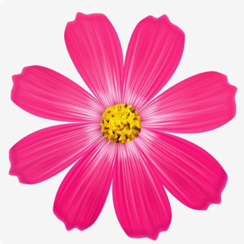 استیکر گل متحرک