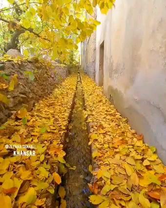 فیلم پاییز خوانسار اصفهان